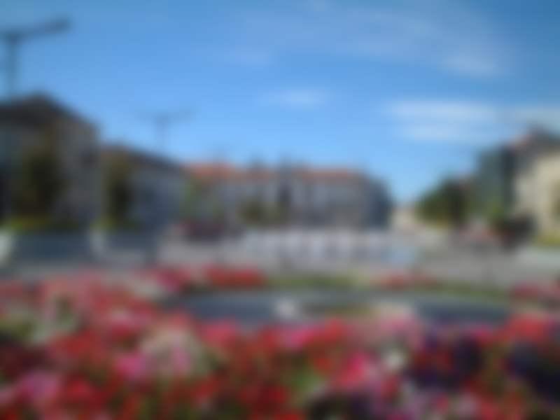 Envios urgentes para o Vila Real