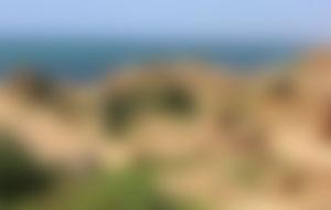 Envíos Express a Argelia