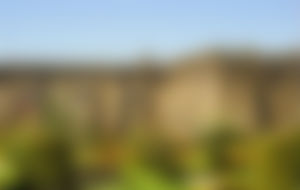 Envios urgentes para Braga