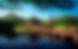 Envíos Express a Corea Del Sur