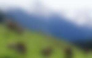 Envíos Express a Kirguistan