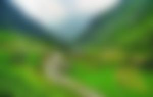 Envíos Express a Pakistan