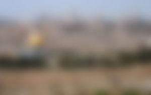 Envíos baratos a Palestina