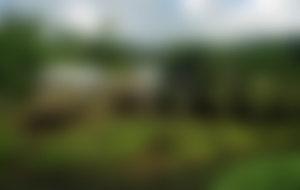 Envíos baratos a Samoa