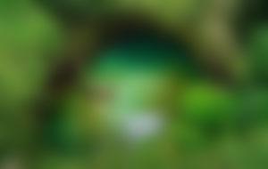 Envíos Express a Samoa