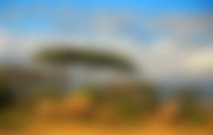 Envíos baratos a Tanzania